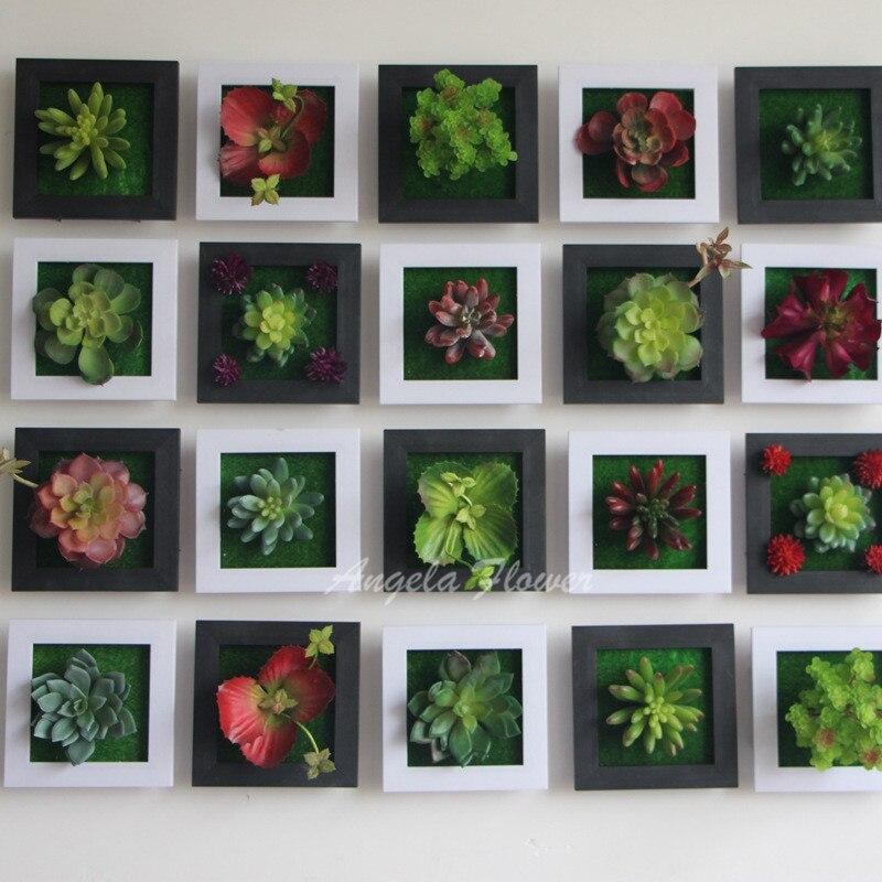 Vergelijk prijzen op Wall Flower Plants - Online winkelen / kopen ...