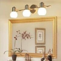 Mirror Lamp LED Wall Light 110/220v Bathroom Lamp