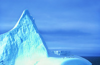 Shengyongbao 7x5ft冷凍テーマビニールカスタム写真撮影の背景プロップモスリン背景BX-100