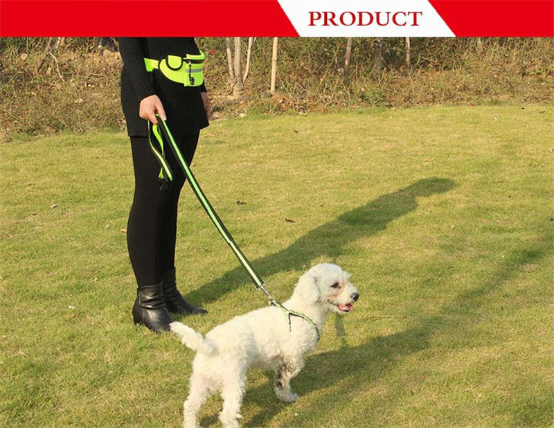 Handfree Bungee Dog Leash (3)