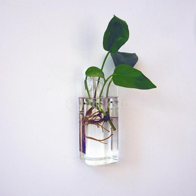 Rectangle Hanging Glass Flower Vase Bottle Hydroponic Terrarium
