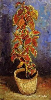 Hand painted art on canvas Coleus Plant in a Flowerpot Vincent Van Gogh painting for sale High quality image