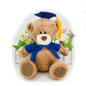 Плюшевый мишка для выпускного, 17 см, плюшевый мишка для выпускного, подарок на выпускной, бесплатная доставка