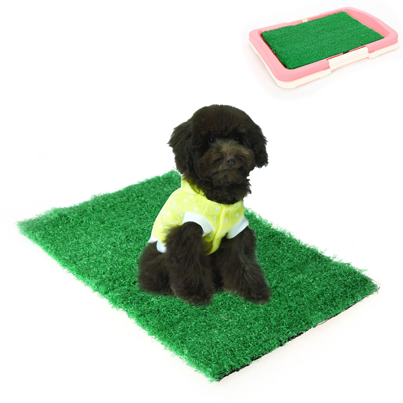 how to potty train your puppy with pee pads