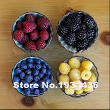 Free shipping, 4 kinds of color 4000 PCS raspberry seeds (1000 blue, 1000black, 1000 red, yellow) delicious fruit plants