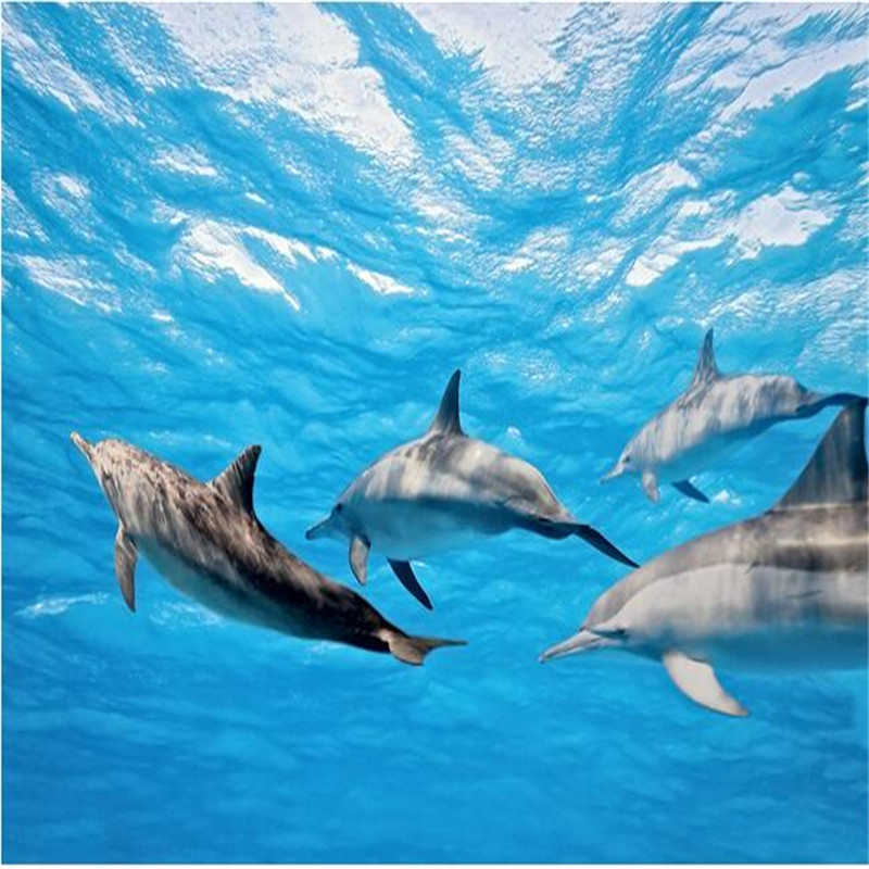 Compare prices on dolphin wall murals online shopping buy for Mural hidupan laut