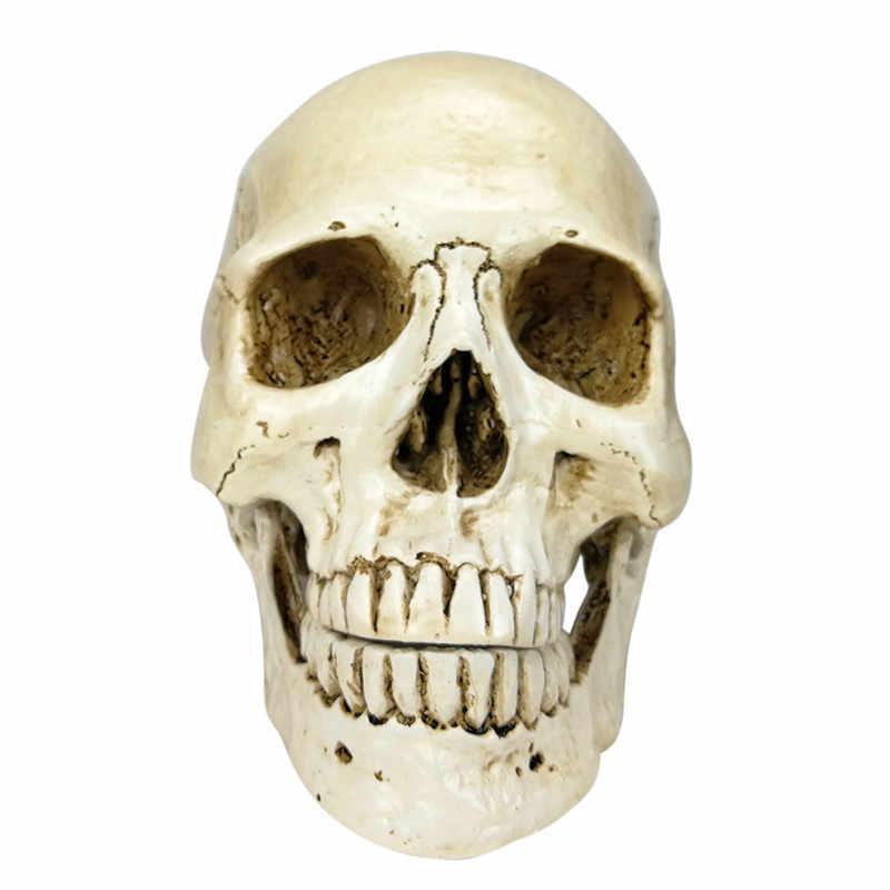 1:1 בית ליל כל הקדושים קישוט קרפט גולגולת אדם ראש שרף Replica 22x15x17cm