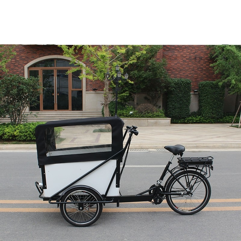 Sturdy Construction 3 Wheel Cargo Tricycle Cargo Electric Tricycle Cargo Tricycle With Cabin