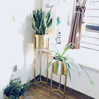 Nordic creative wrought iron flower stand balcony living room interior floor standing modern simple flower pot green stand