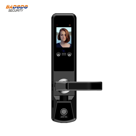Smart face recognition electric door lock palm print door gate lock anti-theft home villa access control door lock system Pakistan