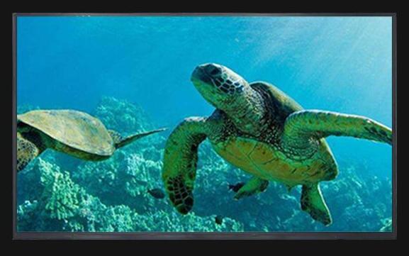"A+15.6"" Laptop LCD Screen for Samsung NP270E5V NP355E5C NP355V5C NP P530 NP S3520 X520 LED LVDS WXGA 1366x768 LED Display matrix|laptop lcd screen|lcd screens for laptops|lcd laptop screen - title="