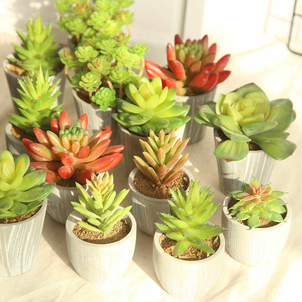 Creative Simulated Succulent Plants DIY Artificial Bonsai Fleshy Flower Art Home Decor hot sale Succulent Plants bonsai