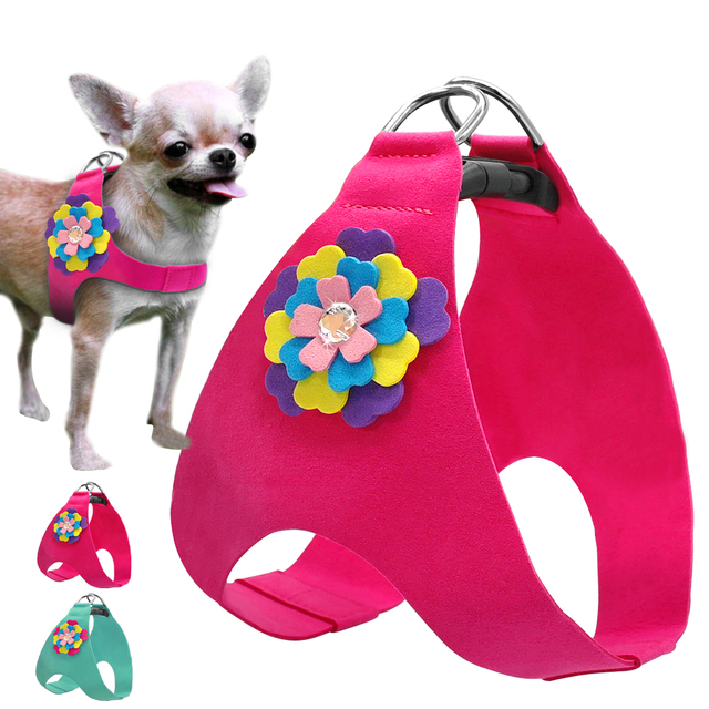 Soft Suede Leather Dog Harness Cute Floral Vest For Small Medium Puppy Cat Chihuahua Poodle Yorkie ShihTzu Blue Pink  XS S M L