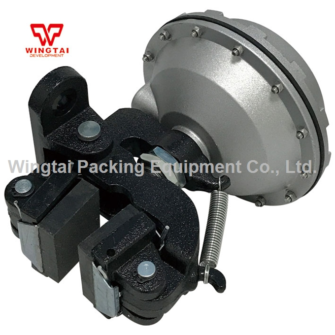 DBG-205 Disk Type Pneumatic Clutch Brake/ Pneumatic Disc Brake/ Pneumatic Air Disc Brake For Industrial sachs sd80310 clutch disc