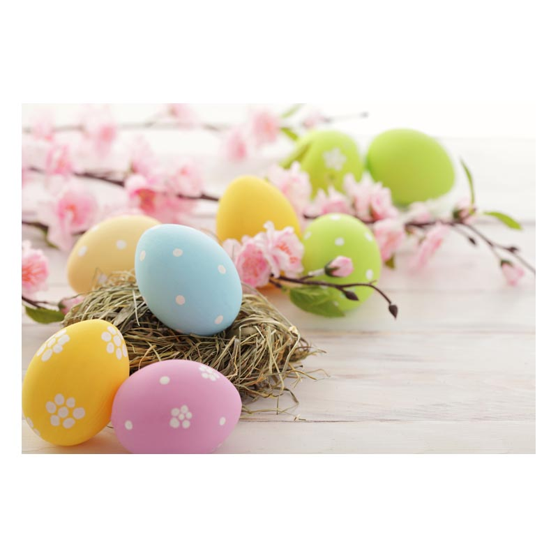 8x6.5ft Happy Easter Frohe Ostern Backdrop Colorful Painted Eggs Tulip Daisy Background Brown Wood Plank Fence Backdrop Holiday Festival Children Adults Portrait Studio Photo Props