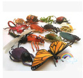 Early childhood cognitive toys Plastic Material Large Insect model sets 14pcs/a lot   TT-1601