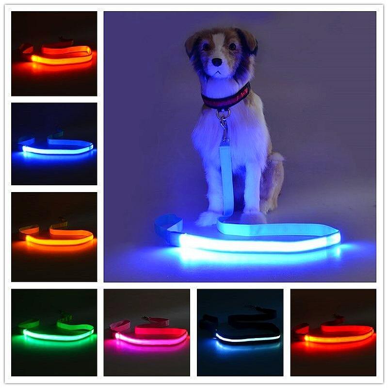 Usb charging Pet Cat Dog LED Leash Safety Glow Leash Flashing Lighting Up Good Quality Dog Leash Kitten and dog traction rope|Leashes| - AliExpress