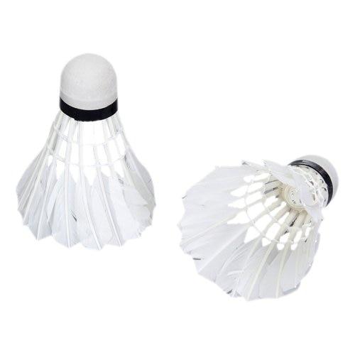 ELOS-LED Badminton Light