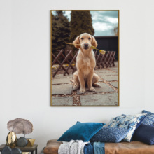 Cute Dog Wall Pictures Canvas Printing Poster,Modern Animal Paintings For Living Room Cartoon Art Decoration