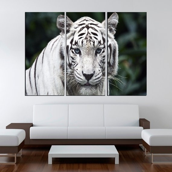 Modern Colorful Photo Picture White Tiger Room Decor 3 pcs Animals ...