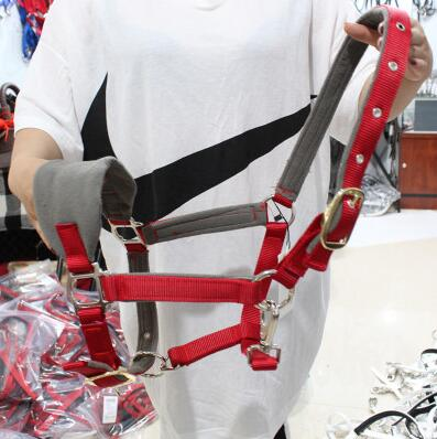 Horsehead Harness, All Wear Proof Cage, Equestrian Supplies, Small Pony Faucet Special Price.Widening And Enlarging Code