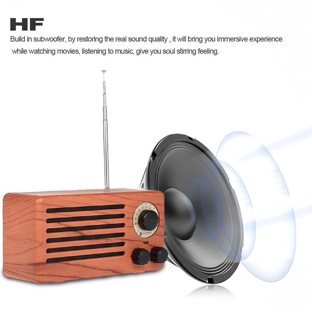 Desktop FM Radio Portable Stereo Bluetooth Speakers,Enhanced Bass Resonator,Mic,3.5mm Jack,Support TF card,USB Input for IPhone