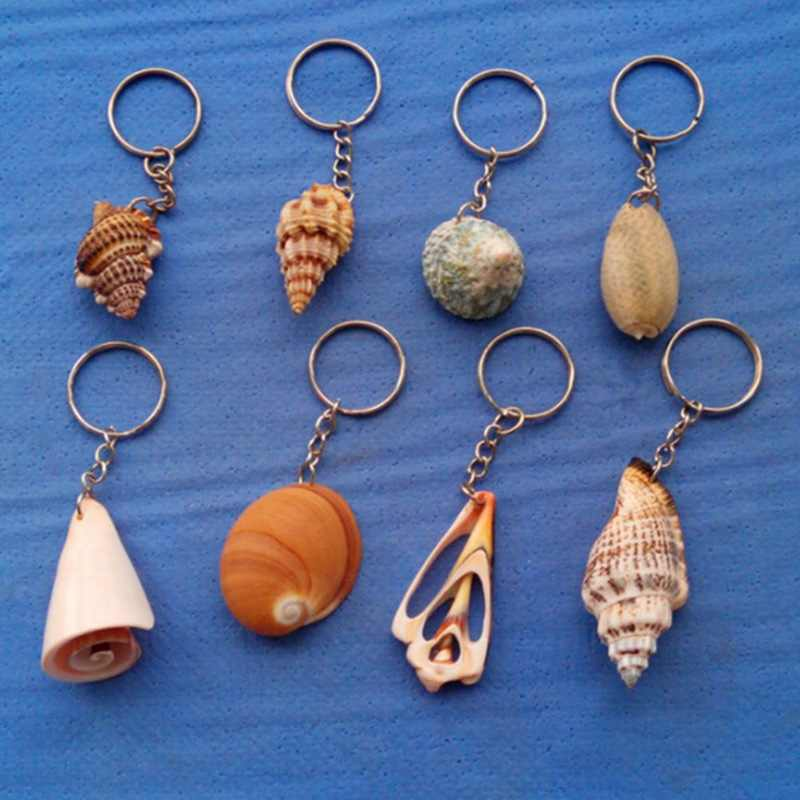 COLOR RANDOM Nautical Fashion Jewelry Mixed Sea Shells charms Crafts For Earrings Necklace DIY Hair Accessories Keychain Funny