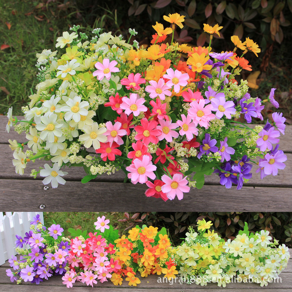 Flagrant Hot Fork Manufacturers Jump Orchid Chrysanmum Plants