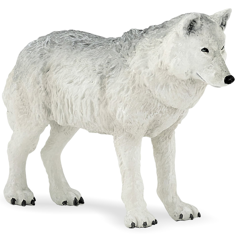 Papo wild animal plastic model of the Polar wolf infant doll toy decoration mr froger carcharodon megalodon model giant tooth shark sphyrna aquatic creatures wild animals zoo modeling plastic sea lift toy