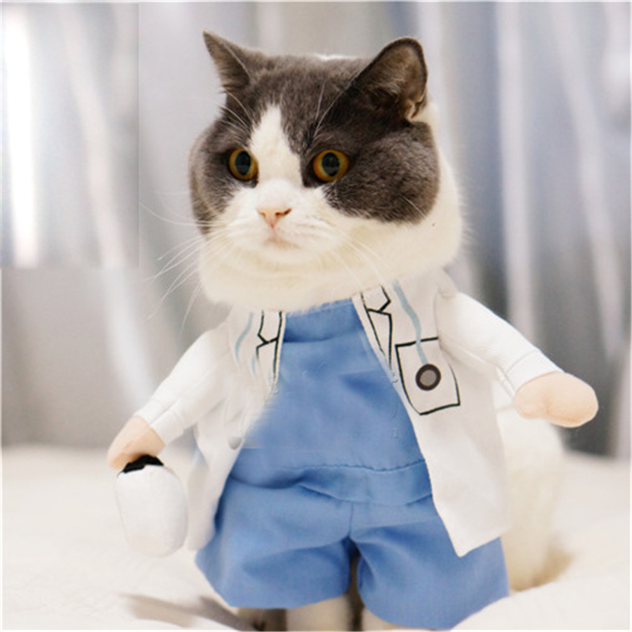 Pet Supplies Cat Clothes Cats Wear Pet Coats Hoopet Clothing For