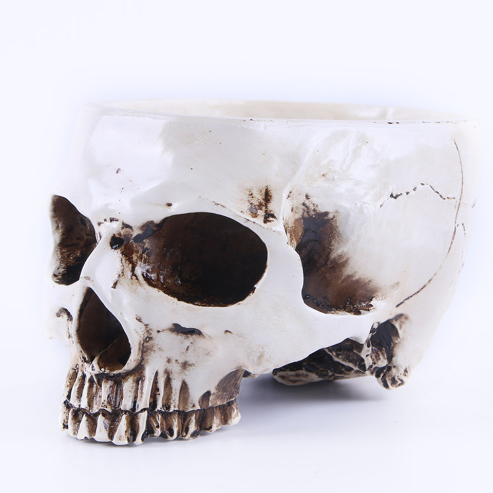 Hand Carved Skull Flower Pot Human Skull Bone Bowl Home Garden Decor Halloween Decoration Flower Pots Planters Aliexpress