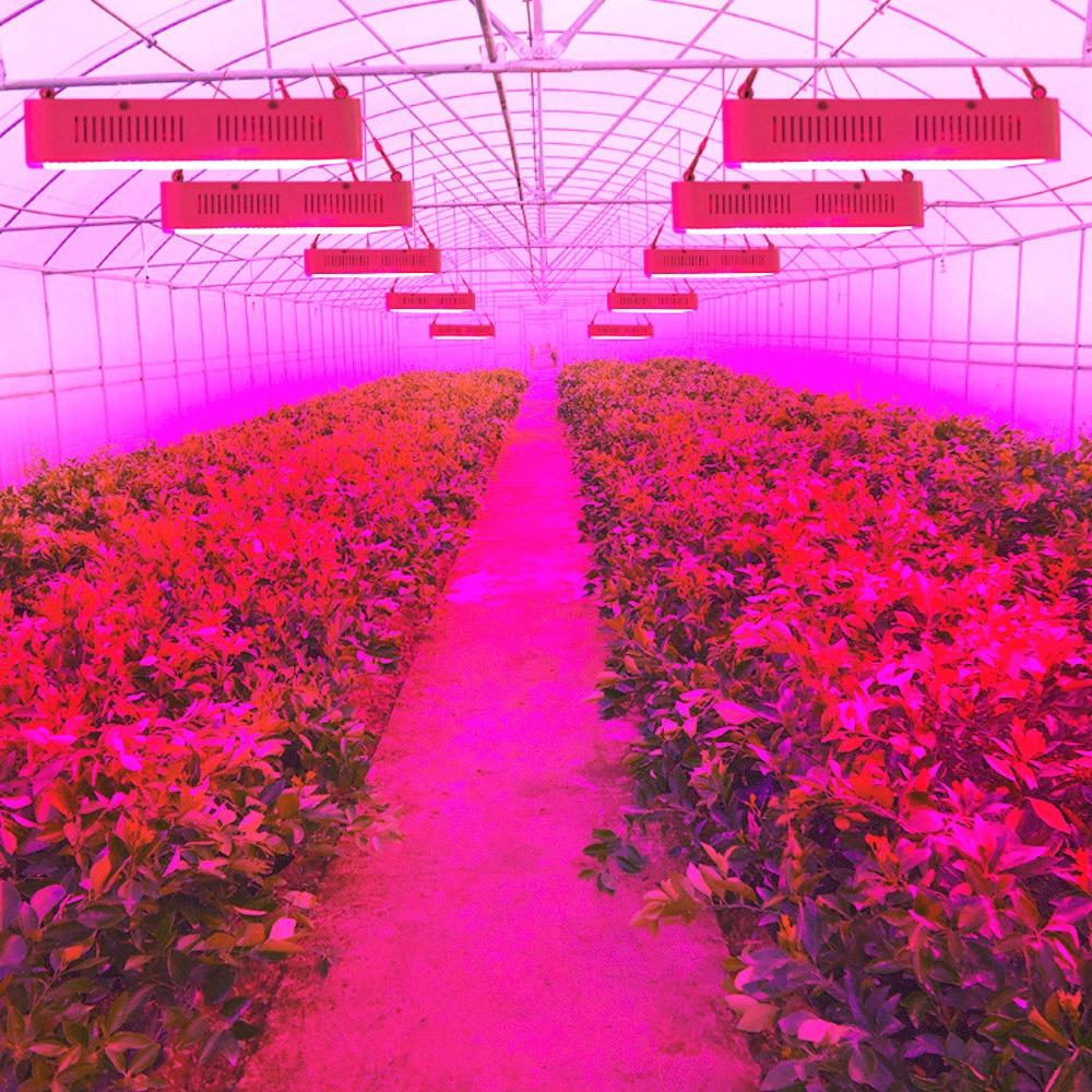 120W 400W 600W 800W 1200W 1600W LED Grow Light Full Spectrum 410-730nm For Indoor Plants and Flower Greenhouse Hydroponics