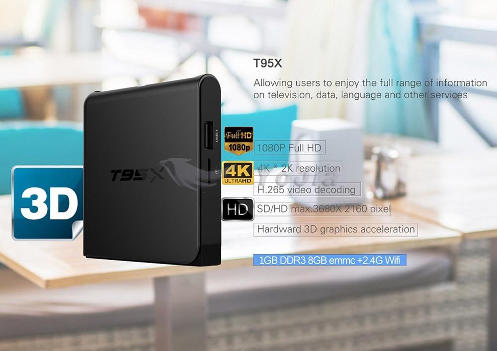T95X (4)