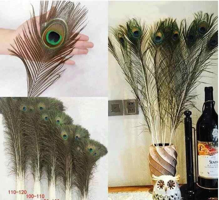 10 pièces mode naturel paon cadeaux de mariage queue yeux plumes 8-12 pouces environ 25-30 cm arrangement fleurs mode t50