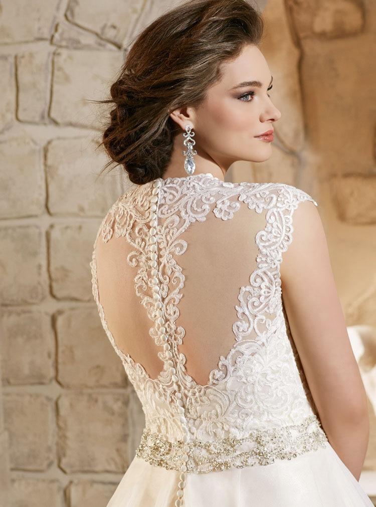 Elegant Alencon Lace Appliques On Soft Net Gown Zipper With Buttons