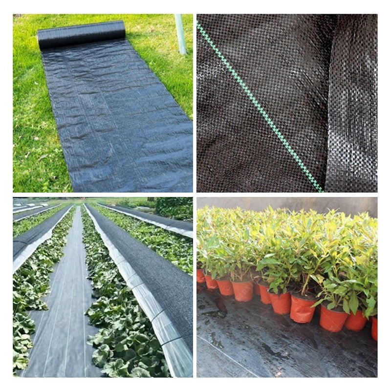 5m Weed Barrier Fabric Agriculture Greenhouse Garden Weed Control Orchard Landscape Plant Weeding Ground Cloth Cover PE Braiding