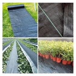5m erva daninha barreira tecido agricultura estufa jardim controle de ervas daninhas pomar paisagem planta capina cobertura de pano à terra pe trança