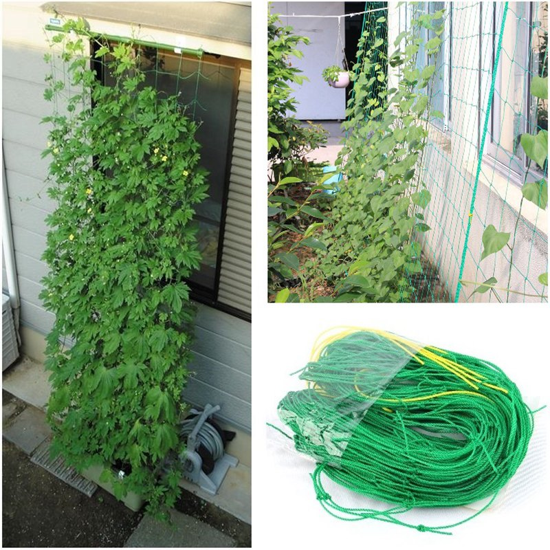 3pc Mesh 10*10cm Nylon Net Climbing Fruit Plants Supports Grape Vine Holder Bracket Beans