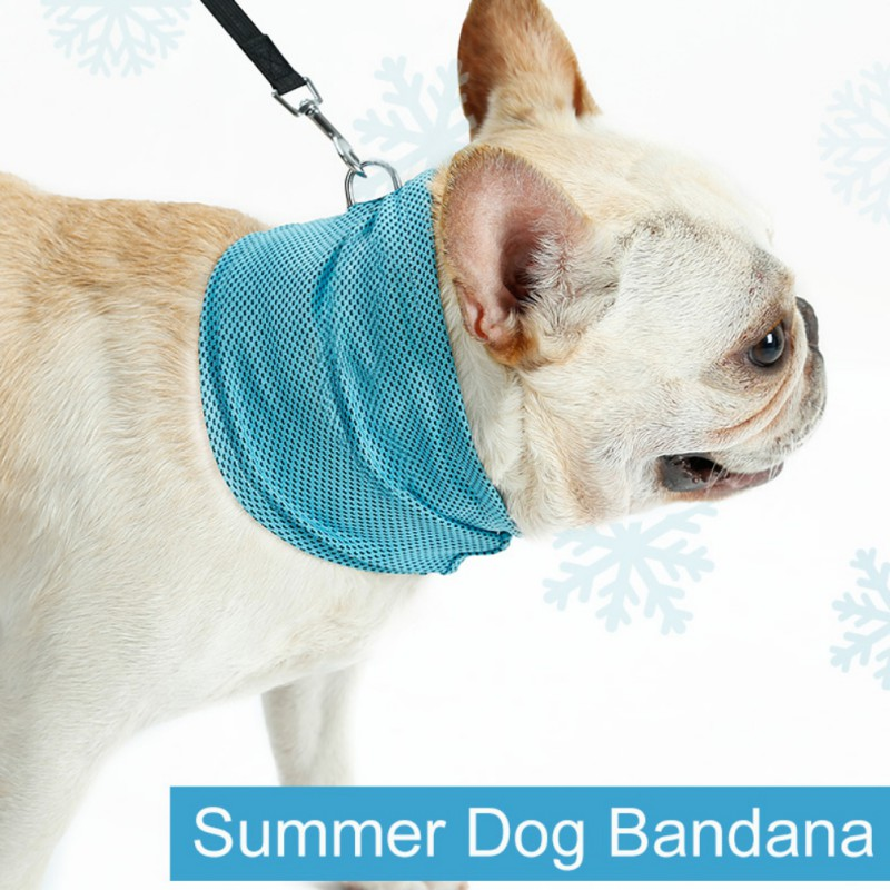 Pet Summer Cold Feeling Scarf Bulldog Instant Cat Cooling Collar Towel Wrap Dog Collar Comfortable Cooling Towel Cat Collar
