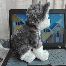 New Arrive TY Classic 1 PC 25CM 10inch slush haski husky dog original hang tag Plush Toys Stuffed animals nano cartoon plush