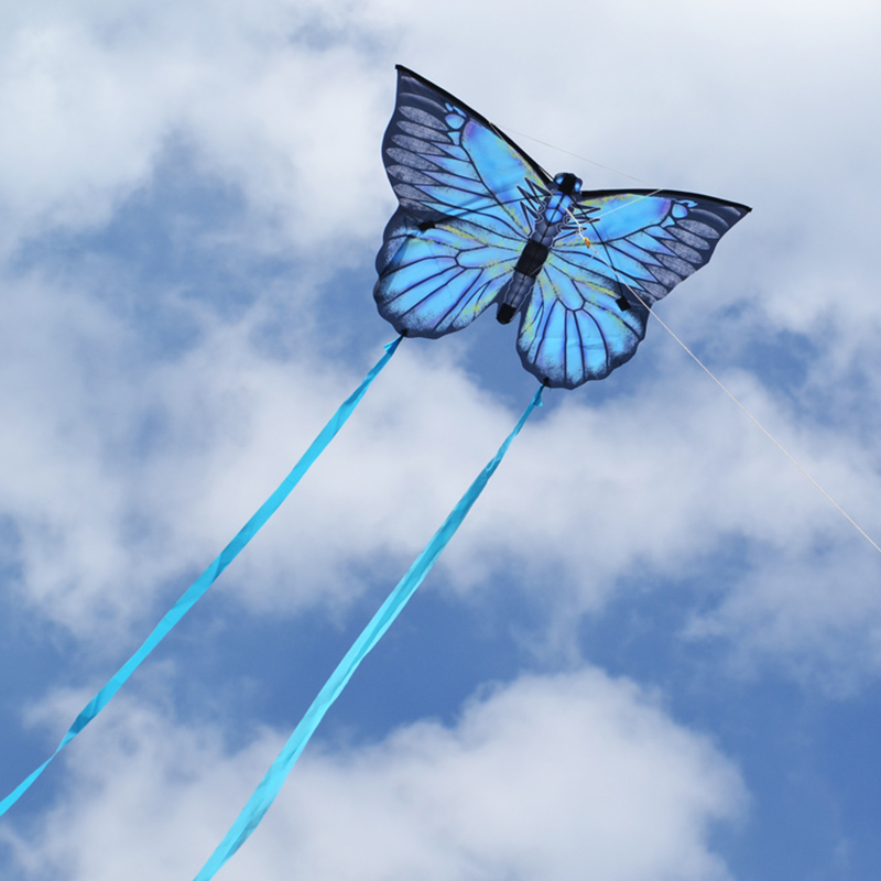 New Creative Butterfly Kite With 3m Tail Outdoor Sport Toys Kite Animal Flying Kites with Kite Line Chidlren GiftNew Creative Butterfly Kite With 3m Tail Outdoor Sport Toys Kite Animal Flying Kites with Kite Line Chidlren Gift
