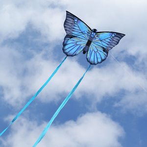 New Creative Butterfly Kite Wi