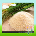 2015 New Sports Nutrition Certified Organic Rice Protein 500g