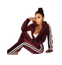 Hchenli Brand 2017 Velvet Two Pieces Set Tracksuit Women Casual Long Sleeve Zipper Hooded Crop Top and Pants Outfits Sexy Set