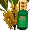 Hot sale!! 100% Fragrans 10ML pure essential oil FREE SHIPPING (D16)