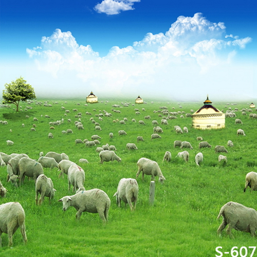 Scenic green grassland vinyl photography backdrops 6.5x10ft digital print for kids portrait photo studio background S-607