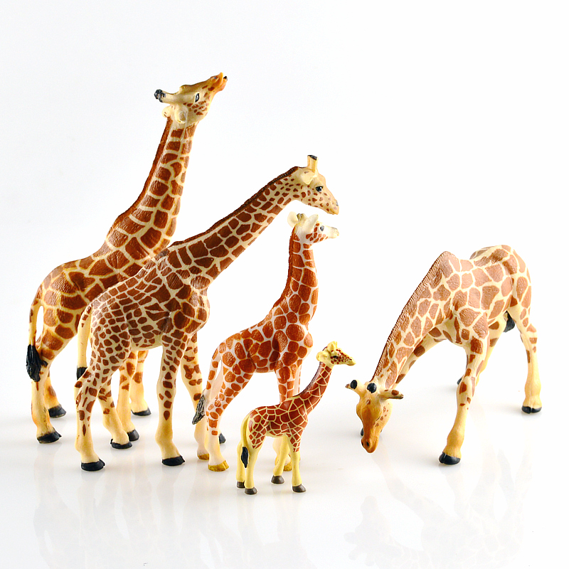 pvc figure  Simulation Solid Zoo Toy Model Wild Animal World Decoration Doll Giraffe 5pcs/set mr froger carcharodon megalodon model giant tooth shark sphyrna aquatic creatures wild animals zoo modeling plastic sea lift toy