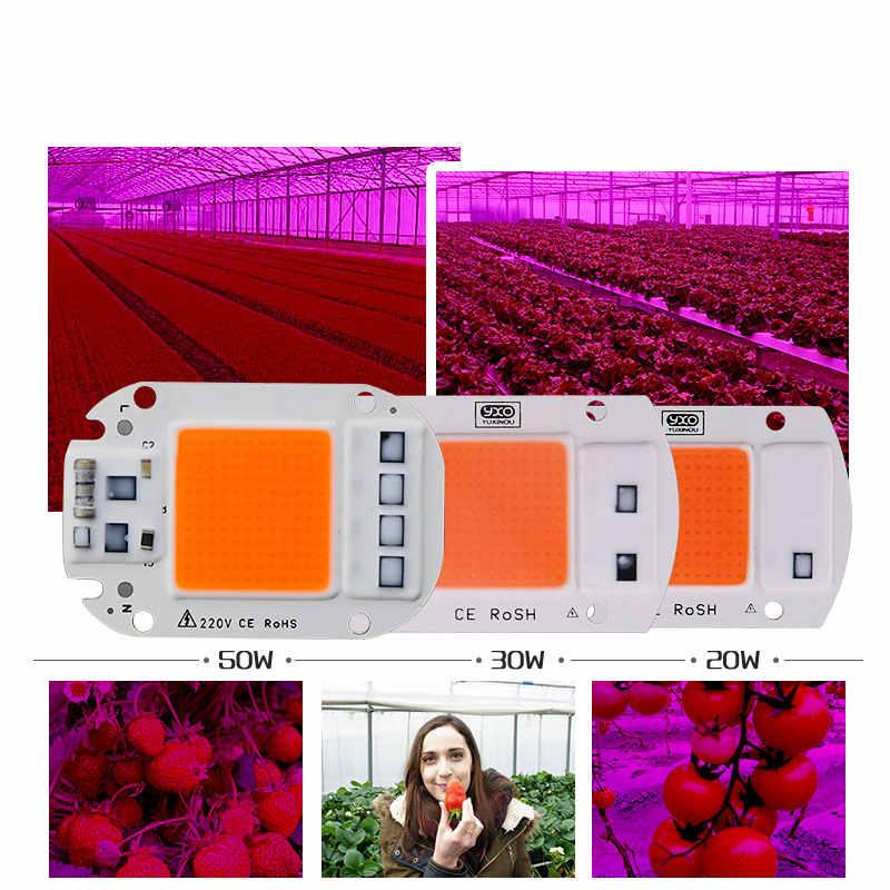 5 Pcs Panas Jual AC220v Nyata Spektrum Penuh 380-840nm Indoor Bukan Sinar Matahari Yang Sebenarnya Daya 20 W 30 W 50 W DIY LED Grow Light Chip