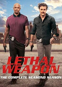《致命武器 第二季》2017年美国剧情,动作,犯罪电视剧在线观看