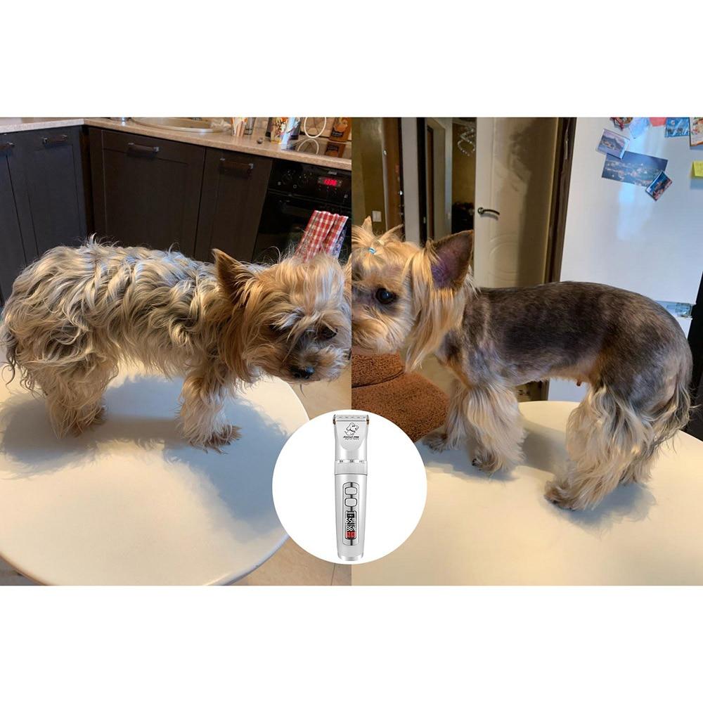 Baorun P9 tondeuse chiens professionnel LCD écran Pet chat tondeuses électrique toilettage tondeuse Rechargeable coupe de cheveux Machine Animal - 4
